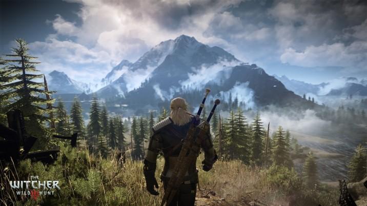 The Witcher 3, une véritable simulation de cueillette de fleurs.